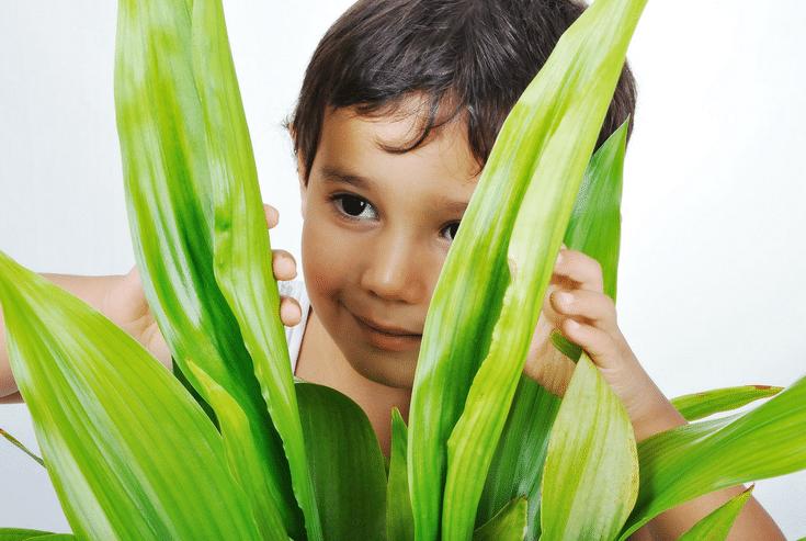 Hide and Seek as a Kid   Innovate Home Org   #MessyGarage #HideandSeek #Garagestorage